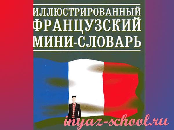 иллюстрированный мини-словарь по французскому языку