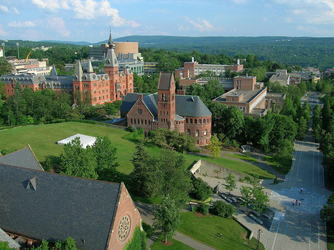 Cornell University фото (7)